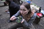 Wildkräuter schmecken
