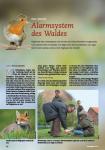 Bericht Vogelsprache Kurs auf Gut Grambow