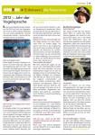 Publikationen Mainkind Januar 2012