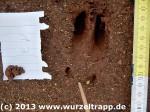 Ankündigung Wildnispädagogik Fortbildung Rhön