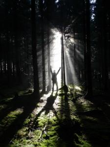 Achtsamkeit, Sinne & Awareness Kurs